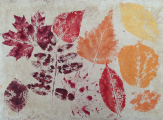 <h5>Leaves</h5><p>Natural pigment and milk paint-printed fallen local leaves on upcycled paper that had previously been washed with coffee.</p>