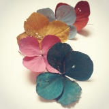 <h5>Painted Hydrangea</h5><p>My first experiments with using natural pigments and hand-made milk paint to decorate fallen hydrange flowers.</p>